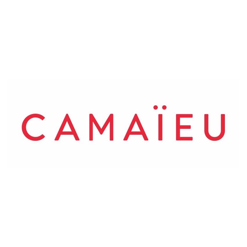 Camaïeu Intégration des données