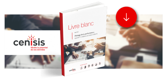 [Livre Blanc] Pilotage de la performance : quand IT, métiers et data s'allient