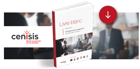 [Livre Blanc] Consultant data management : comment bien le choisir ?